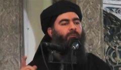سياسي عراقي: أبوبكر البغدادي يحاول الفرار من سوريا متخفيًا