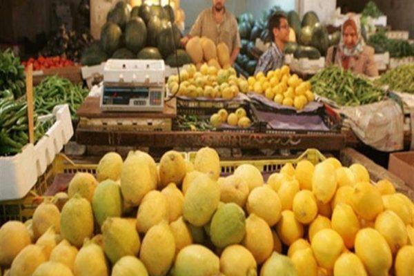 نقيب عام الفلاحين يعلن انخفاض سعر طن الليمون 60 ألف جنيه