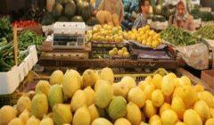 """نقابة الفلاحين: أزمة ارتفاع أسعار الليمون """"مفتعلة"""".. والإخوان ورائها"""