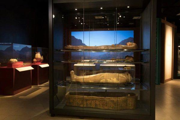 """معرض """"ملكات مصر"""" بواشنطن يطور برامجه السياحية لمتابعي """"ناشيونال جيوجرافيك"""""""