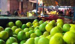 9 جنيهات تراجعا لكيلو الليمون.. أسعار الخضر والفاكهة بسوق العبور اليوم