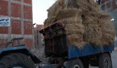 البيئة: حملة للتوعية بالاستفادة من قش الأرز في الدقهلية و4 مكابس جديدة بالمنصورة