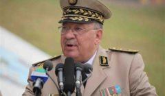 قايد صالح يؤكد تمسك الجيش الجزائري بالحل الدستوري للأزمة في البلاد