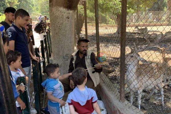 رئيس حدائق الحيوان: 95 ألف زائر في رابع أيام عيد الأضحى