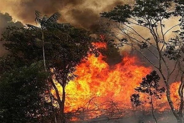 البرازيل تبحث إرسال وحدات من الجيش للمساعدة في مكافحة حرائق الأمازون