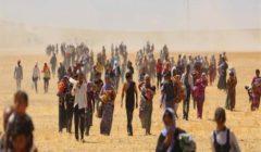"""""""إبادة الإيزيديين"""".. كردستان العراق يقرّ اليوم لإحياء ذكرى جريمة داعش"""