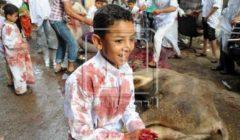 هل توجد خطورة على الأطفال لرؤية عملية الذبح في العيد؟.. خبيرة نفس تجيب