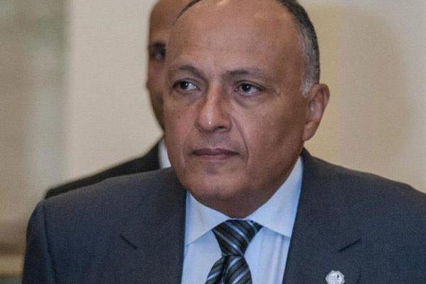 شكري: مصر ترحب بإعلان تشكيل اللجنة الدستورية السورية