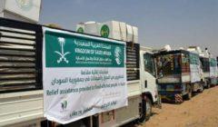 """""""الملك سلمان للإغاثة"""" يسلم مساعدات طبية لمستشفيات بالخرطوم لنجده متضرري السيول"""