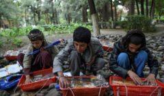 """""""لا سلام لا عمل"""".. جيل كامل من الأفغان دون الـ18 لم يعرف سوى الحرب"""
