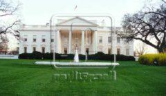 حدث في البيت الأبيض.. سقوط فأر على مراسل صحفي (فيديو)