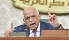 """""""محدش يقدر يجبب البلد ورا"""".. عبدالعال: بعض الوزراء لا يؤدوا عملهم كما يجب"""