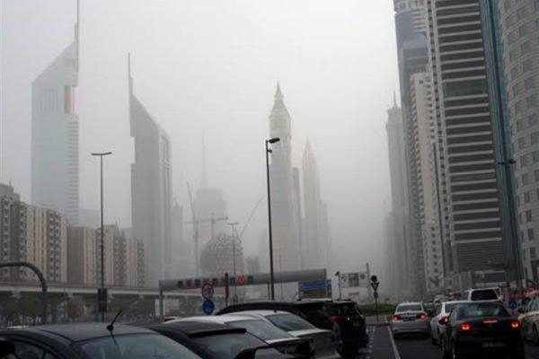 أمطار رعدية في دبي تطيح بأشجار وأجزاء من بنايات (فيديو)