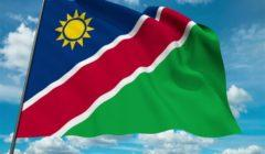 ناميبيا تنتخب رئيسا وبرلمانا جديدين