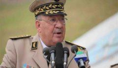 قايد صالح: الانتخابات المخرج الوحيد من الظروف الحالية في الجزائر