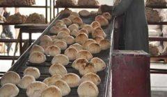 ضبط 72 قضية تموينية و23 مخبزا مخالفا في الجيزة