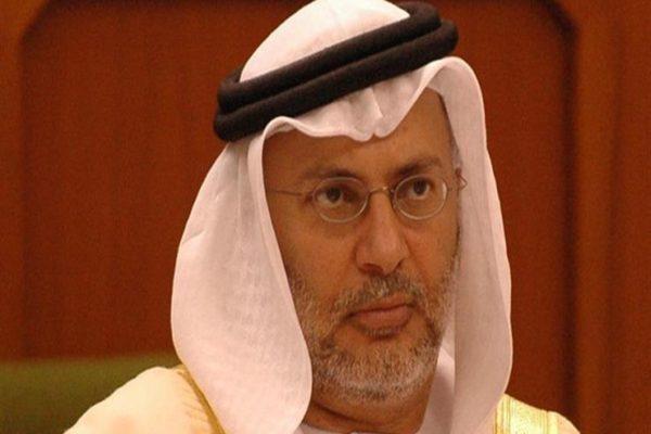 """وزير إماراتي يتحدث عن """"حملة منظمة"""" ضد ولي عهد أبوظبي"""