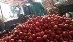 ارتفاع الملوخية وتراجع الخيار.. أسعار الخضر والفاكهة في سوق العبور اليوم
