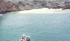 نيوزيلندا: فرق الإنقاذ تفشل في استعادة جثث ضحايا ثوران البركان