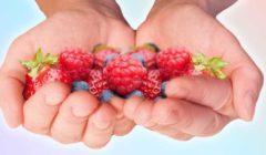 بـ«كف اليد».. خدعة جديدة لقياس كميات الطعام المسموحة خلال اليوم