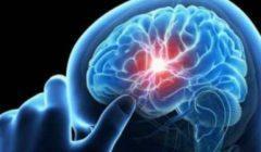 ابتعد عن هذه العادات للحفاظ على صحة المخ - بالتفاصيل