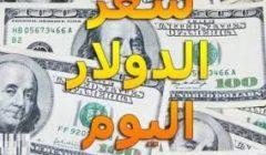 """""""مفاجأة"""" سعر صرف الدولار اليوم الثلاثاء 11 فبراير 2020 و تحركات نحو الانخفاض مع انتعاش للجنيه"""