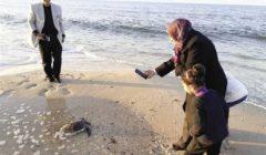 إطلاق سراح «سلحفاة» مهددة بالانقراض في شاطئ «المساعيد»