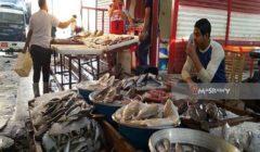 زيادة البلطي والسويسي.. أسعار الأسماك بسوق العبور في أسبوع