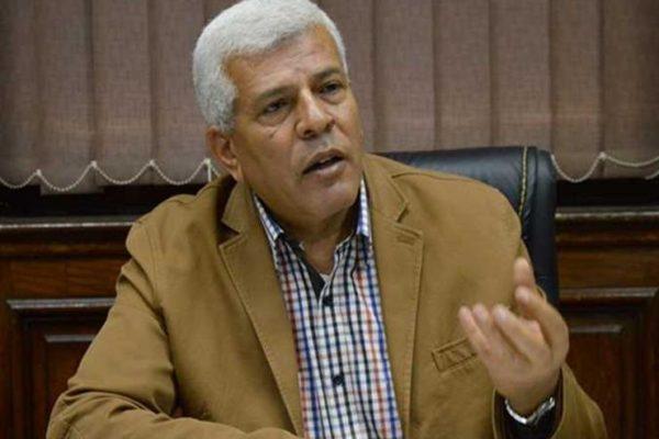 """نقيب الزراعيين يطالب بتفعيل حصانة """"المجالس المحلية"""" بالقانون الجديد"""