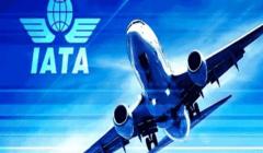 """متوقعًا وصولها لـ113 مليارًا.. """"الإياتا"""": 63 مليار دولار خسائر شركات الطيران بسبب كورونا"""