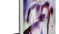 الشاعر الكبير أحمد سويلم يكتب عن: الحس الصوفى فى ديوان عمار على حسن