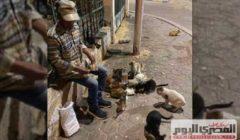 «دول صحابي وحبايبي».. حكاية «سيد» مع قطط الشوارع منذ 5 سنوات (صور)