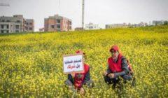 عملية احتيال مدوية في المغرب تبيع مساكن وهمية لمئات الضحايا
