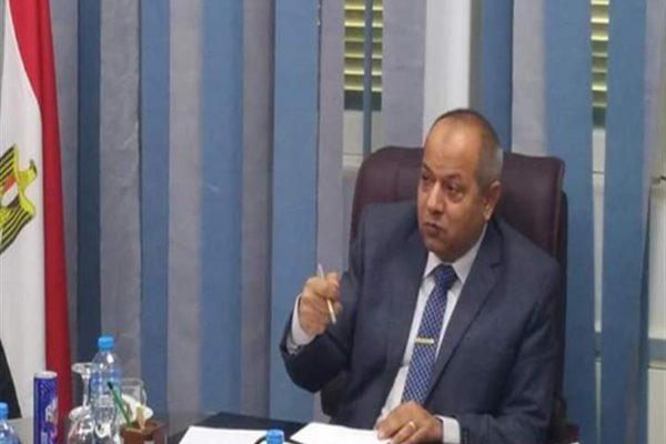 رئيس مصر العليا للكهرباء يكشف تفاصيل دعوات التحريض على رجال الضبطية القضائية