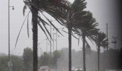 سرعة الرياح 9.3 متر في الثانية.. البيئة: شبورة ورياح مثيرة للأتربة اليوم