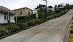 نيوزيلندا تستعيد لقب امتلاك أكثر الشوارع انحدارا في العالم