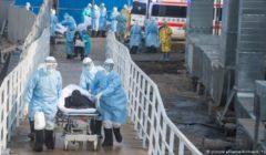 شفاء أكثر من 200 عربي في أمريكا من بينهم زوجة أول طبيب مصري توفي بكورونا