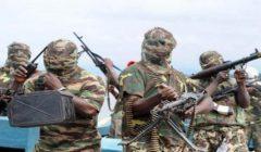 مقتل 47 شخصا في هجمات شنتها عصابات مسلحة بنيجيريا