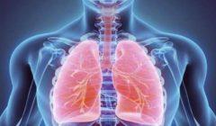 القومي للبحوث يكشف فوائد الصيام لصحة الإنسان.. ينقي الجسم من السموم
