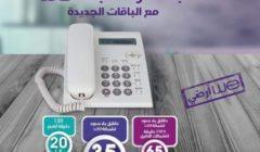 """phone bill""استعلم || فاتورة التليفون الأرضي أبريل 2020 ""te data"" رابط الموقع الرسمي للشركة المصرية للاتصالات telecom egypt  أكواد شبكة محمول المصرية للاتصالات ""WE"""