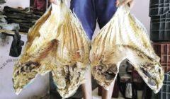 طواجن «السمك الناشف».. أشهر وجبات البحر الأحمر