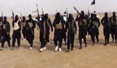 """فرار عدد من إرهابيي """"داعش """" من سجن """"الهول """" بريف """"الحسكة """" السوري"""
