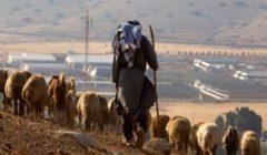 إصابة فلسطينيين اثنين برصاص مستوطنين شمال رام الله