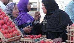 زيادة الكوسة والفاصوليا.. أسعار الخضروات والفاكهة في سوق العبور اليوم