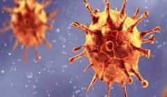 فيروس كورونا: كيف حيرت الطفرات العلماء؟