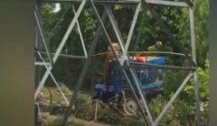 معركة شرسة بين نمر ومزارعين.. وأحدهم يدافع عن نفسه   فيديو