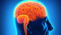 4 نصائح على مريض جلطة المخ اتباعها أثناء الصيام