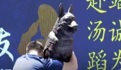 في الذكرى الـ 12 لزلزال ونتشوان.. الصين تدشن تمثالا لكلب إنقاذ| فيديو