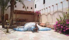 الغطاس صدام الكيلاني يستغل الزجاجات الفارغة في صنع أكبر سلحفاة بحرية (صور)
