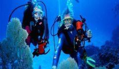 """7 قرارات عاجلة لـ""""غرفة سياحة الغوص"""" بشأن اشتراكات وتجديد عضويات الأعضاء"""